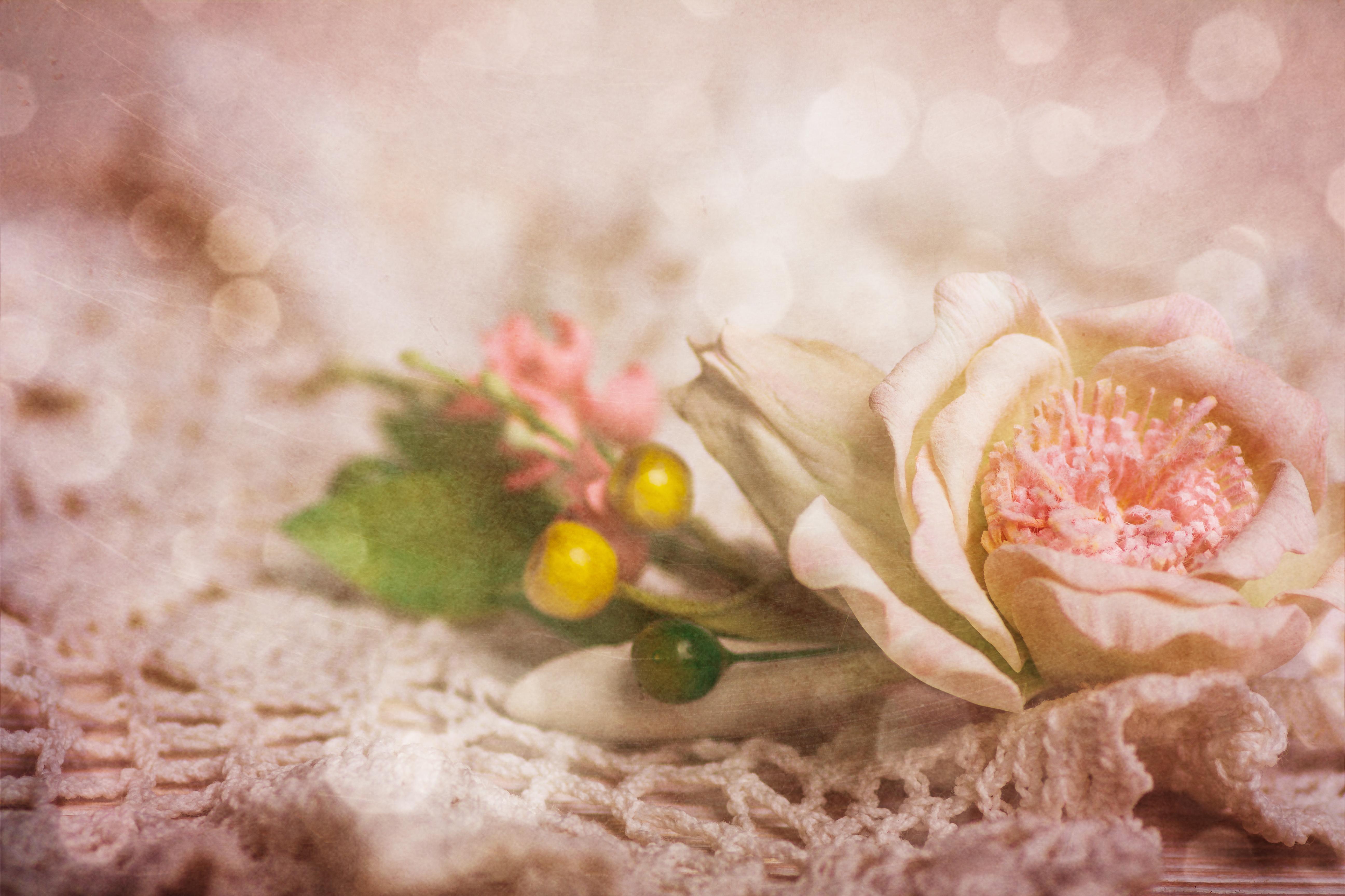 Der Duft von Blumen
